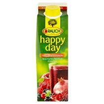Jus de multifruits HAPPY DAY (1L)